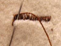 buttonhole06